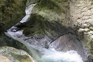 photo nature 1