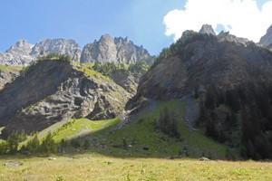 photo nature 3