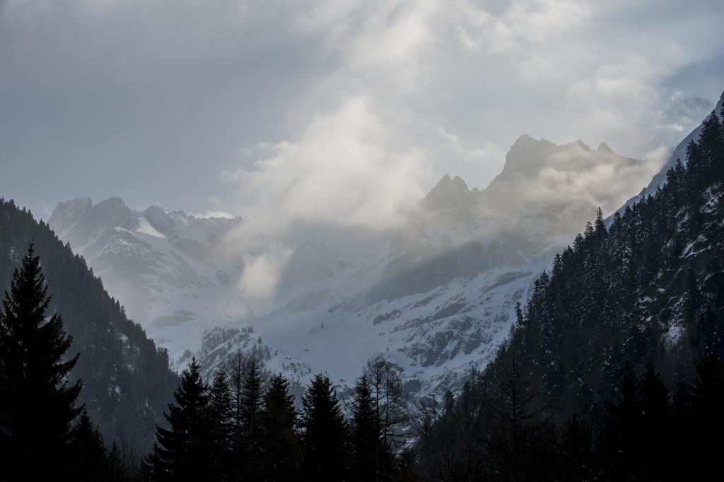 paysage (1125)
